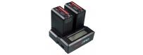 Batteries et Chargeurs DV